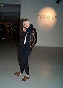 CAISA EDERYD, Fired Up, Exhibition of work by Joe Clark, Lauren Cotton, Rory McCartney, David Jones and Farid Rasulov. Gazelli Art House. Wakefield st. London. WC1. 10 February 2011. -DO NOT ARCHIVE-© Copyright Photograph by Dafydd Jones. 248 Clapham Rd. London SW9 0PZ. Tel 0207 820 0771. www.dafjones.com.
