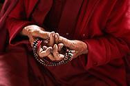 Mandala offering mudra (gesture) - Tungri, Zanskar, Jammu-Kashmir, India, 2012
