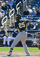 PHOENIX, AZ - FEBRUARY 23:  Chris Young #25 of the Oakland Athletics bats in the spring training game against the Milwaukee Brewers at Maryvale Baseball Park on February 23, 2013 in Phoenix, Arizona.  (Photo by Jennifer Stewart/Getty Images) *** Local Caption *** Chris Young