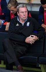 Birmingham City manager Harry Redknapp before the Sky Bet Championship match at the Pirelli Stadium, Burton