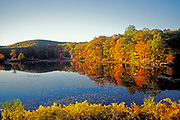 Fall landscape at lake.