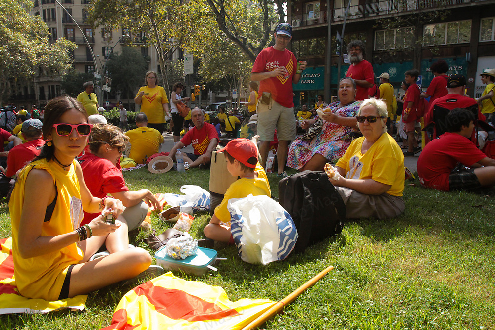 """The Via Catalana 2014, or V. The Catalan Way 2014. The """"V"""" was 11 kilometers in length and about 200,000 square meters in area and almost 1.000.000 people. The Catalan Way 2014 (Via Catalana 2014), or """"V"""", was a large gathering in Barcelona on 11 September 2014, the National Day of Catalonia, in support of the Catalan self-determination referendum of 2014 and of Catalan independence from Spain."""