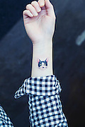 Cat Tattoos are the cutest way to break the law in south Korea<br /> <br /> The law frowns upon tattoos in South Korea, but that hasn't stopped tattoo enthusiasts and the outlaw tattoo artist who serve them from getting cat tattoos to remind them of their feline friends while they're out and about. Sol Tattoo, a parlor in Seoul, specializes in these cute cat tattoos.<br /> South Korean law states that only medical practitioners (doctors) can do tattoos due to their invasive nature. Growing pressure from the public, however, spearheaded by popular athletes and celebrities, is encouraging the government to legalize the work of South Korea's underground tattoo artists.<br /> ©Exclusivepix Media