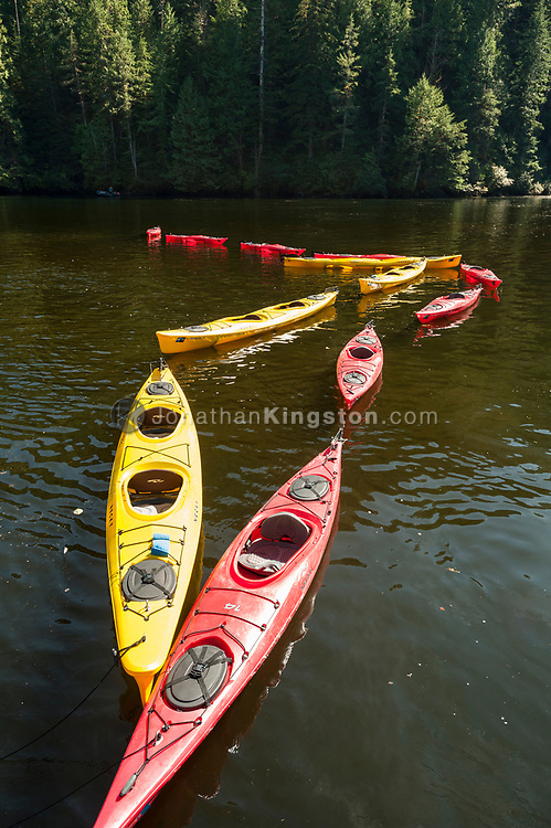 Empty red and yellow sea kayaks float tethered together in the waters of Misty fjords national monument.