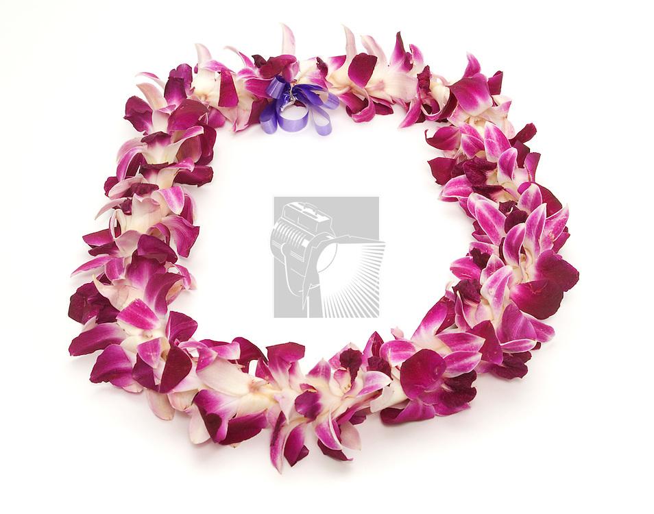 Polynesian/Hawaiian lei shot on white
