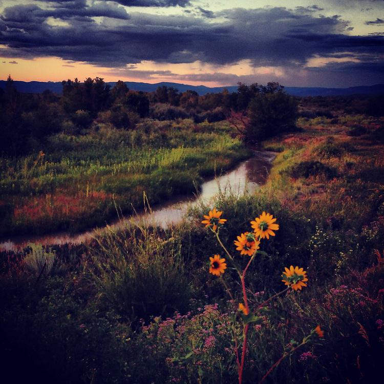 Southern Ute Lands. Ignacio, Colorado.