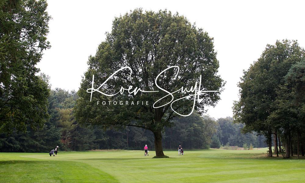 OOSTERHOUT - Hole 14 met eik.  Oosterhoutse Golf Club COPYRIGHT KOEN SUYK