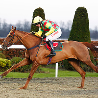 Cross Of Honour and N Fehily winning the 3.35 race