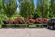 Garden, Calf Creek Ct, Water Ill, NY