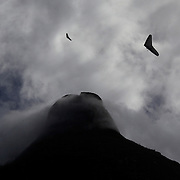 Hang gliders flying above the hillside of Pedro Bonita high in the hills of Rio de Janeiro. Pilots of hang gliders and para gliders take tourists for tandem flights with breathtaking views of the city before landing on Sao Conrado beach. Rio de Janeiro,  Brazil. 9th September 2010. Photo Tim Clayton.