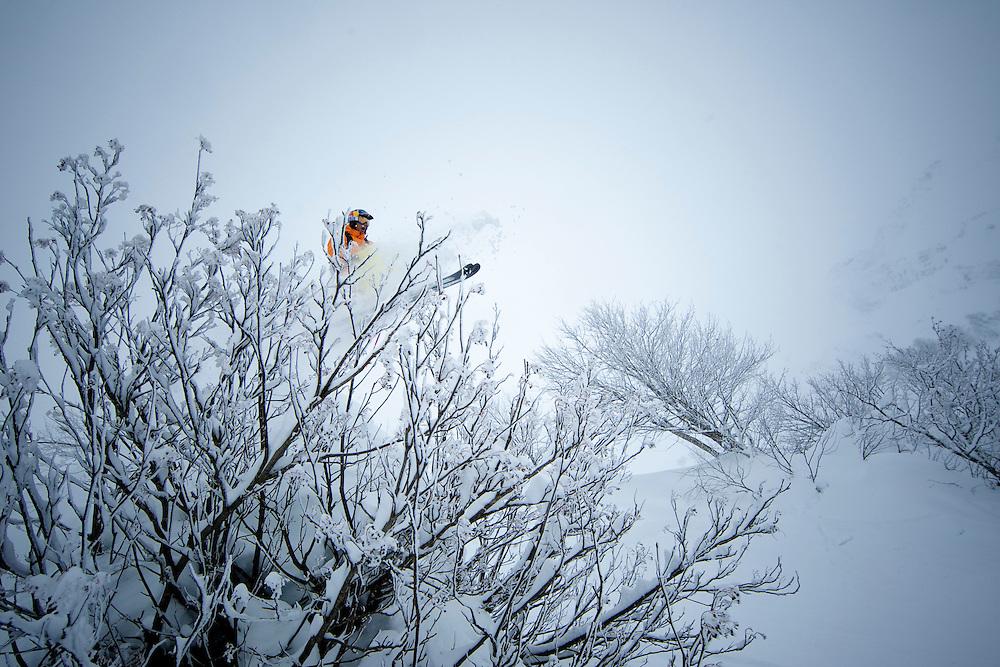 RIDER: PHIL MEIER - SUI  Location: Location Sochi