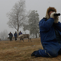 Hirvas Salmi, FINLAND.  October 16, 2007- Observing his reindeer through binoculars, a herdsman tabulates exactly how many there are to corral.
