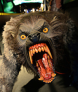 Garden City, New York. 15th June 2013. A snarling monster with large fangs is on display at the Eternal Con Pop Culture Expo, which was hosted by the Cradle of Aviation Museum of Long Island. This and other film memorabilia was brought by Billy Simons, the owner of one of the world's largest personal collections of original Planet of the Apes costumes and props that were actually used in the 1960s and 1970s films.