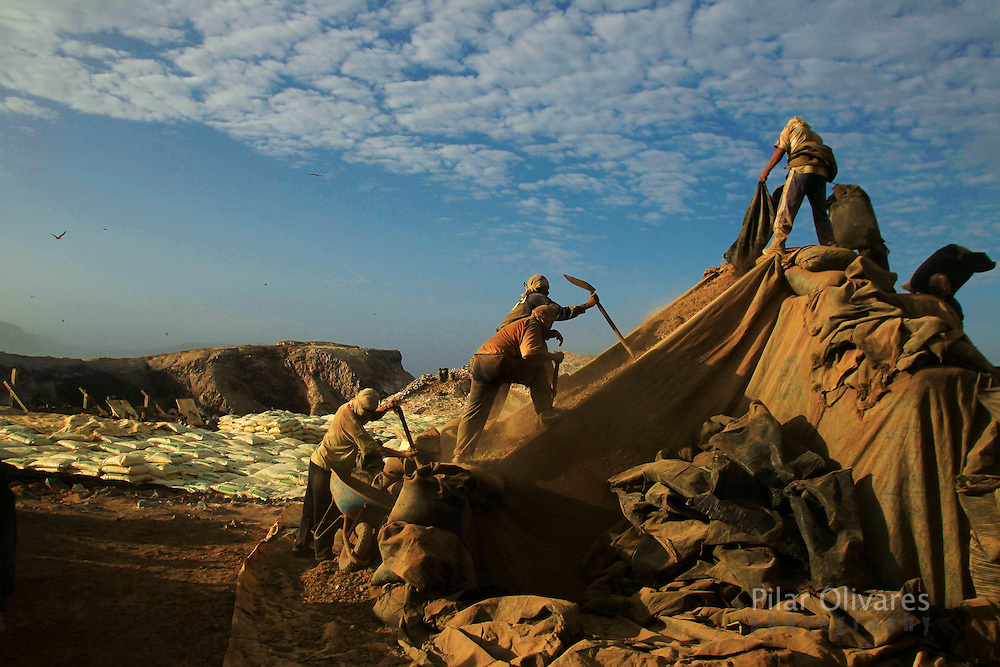 Workers process bird dung on the Ballestas island, south of Lima, October 8, 2011. Ballestas, as other 21 islands along the Peruvian coast, are home of nearly 4 million migratory birds as guanays, boobies and pelicans which excrement make up the world's finest natural fertilizer. The bird dung, also known as guano, reached its greatest economic importance in the 19th century as a coveted resource, being exported to United States, England and France. Nowadays Peru hopes to benefit mostly small farmers with an annual production of 20 thousand tons, destined to boost organic agriculture, according to Agrorural, the Rural Agrarian Productive Development Program.