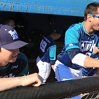 UNCW vs Virginia Baseball
