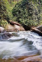 River torrent flowing through montane rainforest, Doi Inthanon National Park, Chiang Mai province, Thailand