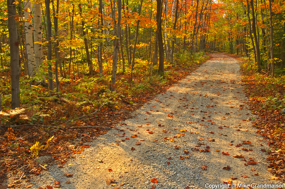 Autumn on the Bruce Trail. Bruce Peninsula.<br />