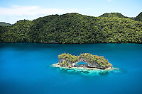 """This untouched photo from a helicopter over Palau shows the intense colors of the famous """"Rock Islands"""", specifically the """"Arch""""."""