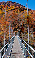 Steel cable hanging bridge in autumn in Valle Onsernone, Ticino, Southern Switzerland.