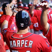 Bryce Harper, Washington Nationals, celebrates with team mates in the dugout after scoring a run during the New York Mets Vs Washington Nationals, MLB regular season baseball game at Citi Field, Queens, New York. USA. 1st August 2015. (Tim Clayton for New York Daily News)