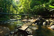 Narrow wooden bridge crosses the Pargo river in the rainforest of Corcovado National Park, the largest park in Costa Rica.