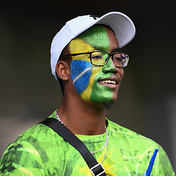 Fan of Brazil during the Women's World Cup match between Australia and Brazil at Stade de la Mosson on June 13, 2019 in Montpellier, France. (Photo by Alexandre Dimou/Icon Sport)