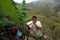 A coca worker has a drink of chica, a fermented corn drink, during a break from picking coca in El Rosario, Nariño, in southwestern Colombia, on July 15, 2008. Nariño is a one of Colombia's most troubled departments; with wide spread coca cultivation and the presence of illegal armed groups vying for control of the coca business. (Photo/Scott Dalton)