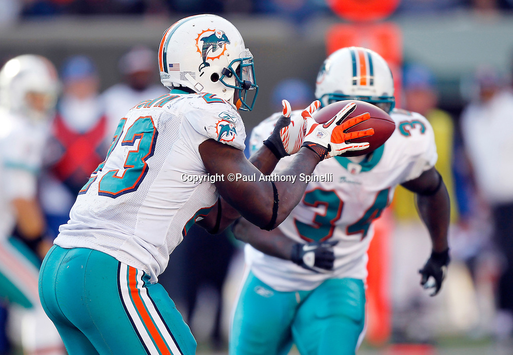 Miami Dolphins running back Ronnie Brown (23) takes a shotgun snap in the wildcat formation during the NFL week 8 football game against the Cincinnati Bengals on Sunday, October 31, 2010 in Cincinnati, Ohio. The Dolphins won the game 22-14. (©Paul Anthony Spinelli)