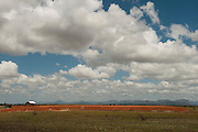 Oil extraction infrastructure, now obsolete.<br /> Rupununi<br /> GUYANA<br /> South America
