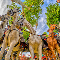 Horsemen, April fair, Seville, Spain.