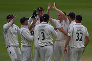 Chris Woakes (Warwickshire County Cricket Club) celebrates with team mates taking the wicket of Scott Borthwick   (Durham County Cricket Club) during the LV County Championship Div 1 match between Durham County Cricket Club and Warwickshire County Cricket Club at the Emirates Durham ICG Ground, Chester-le-Street, United Kingdom on 14 July 2015. Photo by George Ledger.