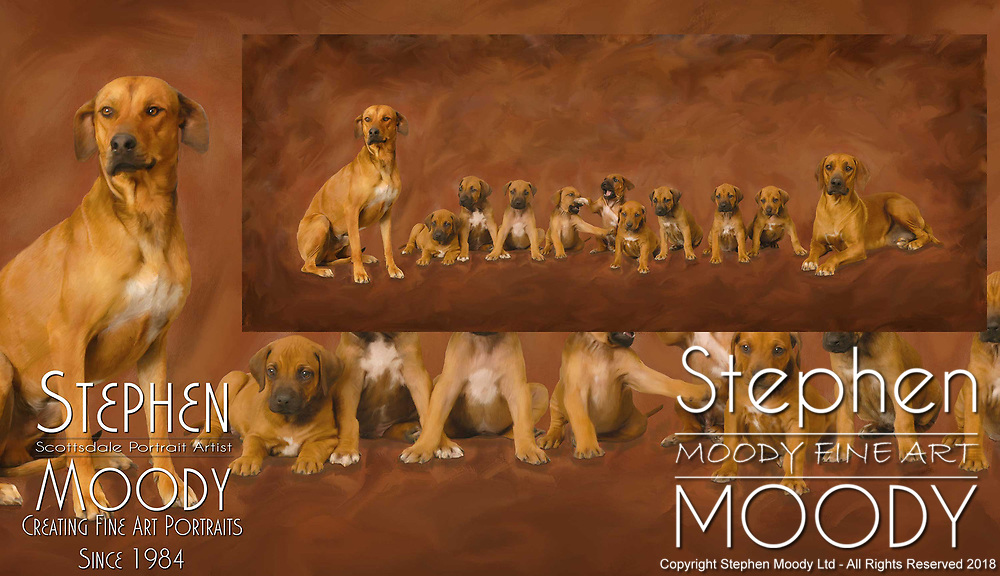 Litter of puppies in a Fine Art Pet Portrait of Rhodesian Ridgebacks by Stephen Moody - Scottsdale Portrait Artist and Master Photographer, Scottsdale, AZ