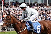 THREADING (6) ridden by jockey William Buick and trained by Mark Johnston winning The Listed Longines Irish Champions Weekend Filles Stakes over 1m (£50,000) atat the York Dante Meeting at York Racecourse, York, United Kingdom on 18 May 2018. Picture by Mick Atkins.