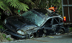 Auckland-Two people airlifted to hospital after Muriwai crash