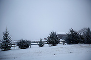 Petersburg Jan 2015 low
