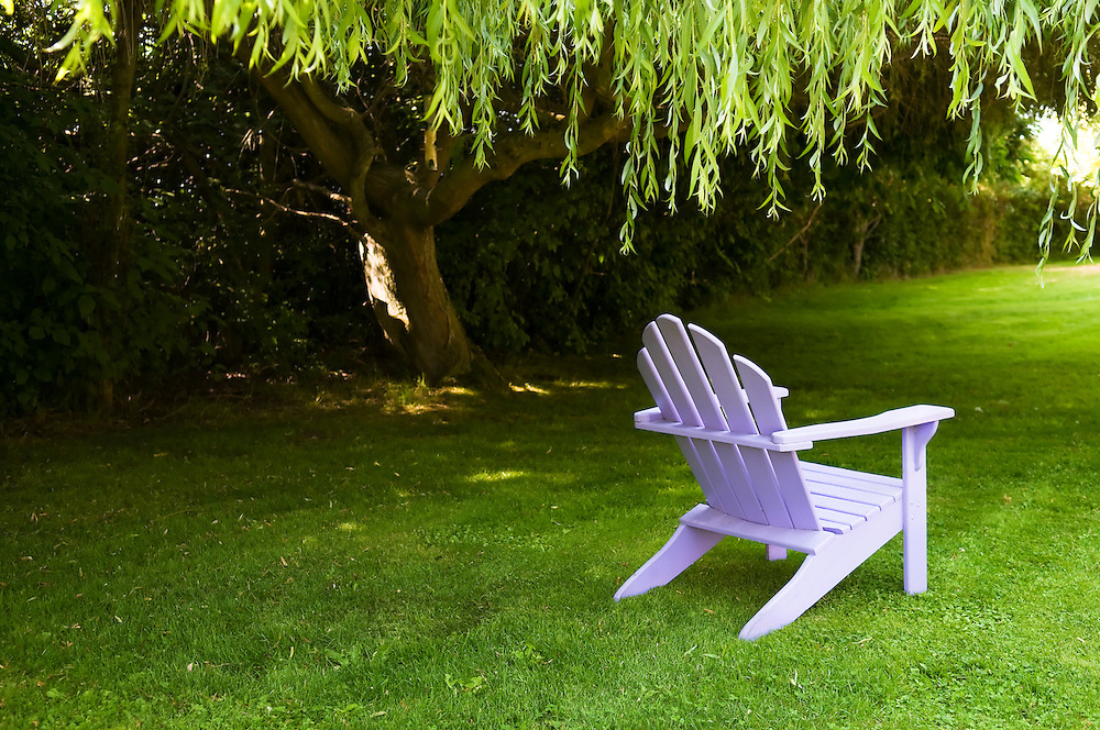 Purple Adirondack chair in a garden under a Willow tree.