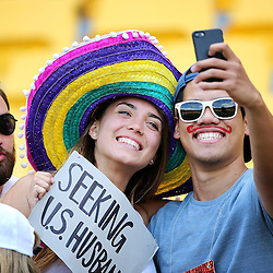 Fans during the 2017 HSBC World Sevens Series Wellington day two at Westpac Stadium in Wellington, New Zealand on Sunday, 29 January 2017. Photo: Martin Hunter / lintottphoto.co.nz