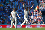 Sam Curran of England unsuccessfully appeals for an lbw against Peter Siddle of Australia during the 5th International Test Match 2019 match between England and Australia at the Oval, London, United Kingdom on 13 September 2019.