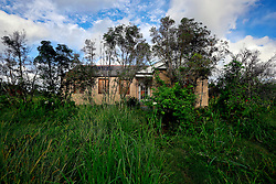 23 August 2013. Braithwaite, Louisiana.<br /> Hurricane Isaac 1 year later. <br /> An abandoned flood damaged rural building is overgrown and falling into disrepair. <br /> Photo; Charlie Varley
