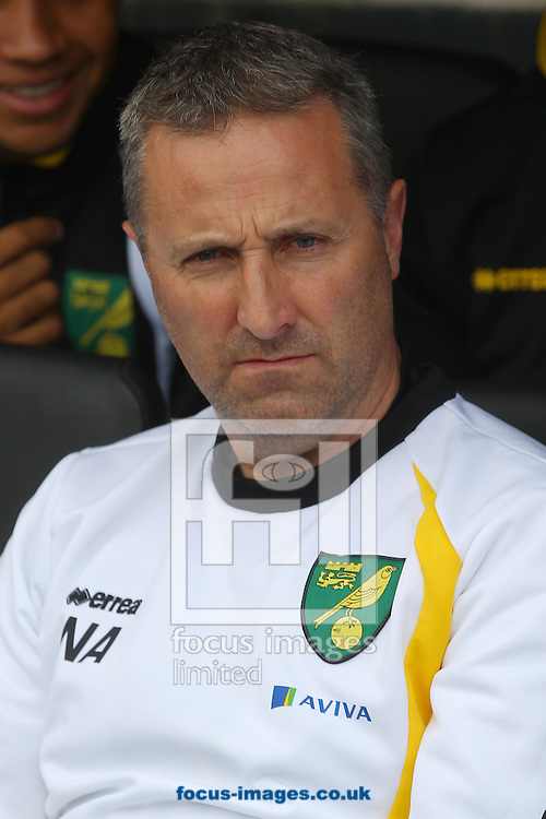 Norwich Manager Neil Adams before the Sky Bet Championship match at Craven Cottage, London<br /> Picture by Paul Chesterton/Focus Images Ltd +44 7904 640267<br /> 18/10/2014