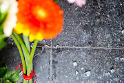 Brussels 23 March 2016 flowers were lit at a subway entrance where the floor is filled with shattered glass and some bloodstains