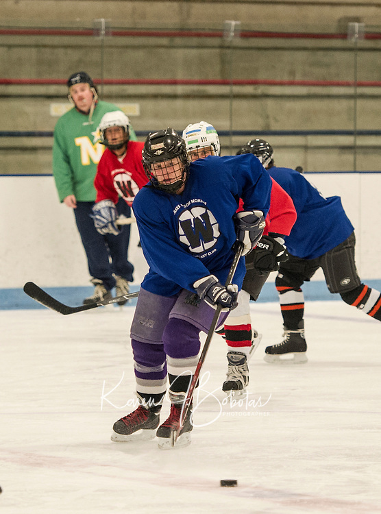 Ann Sydow of the Blue team goes for the puck during Tuesday evening Lakes Region Womans Hockey Club at the Laconia Ice Arena.  (Karen Bobotas/for the Laconia Daily Sun)