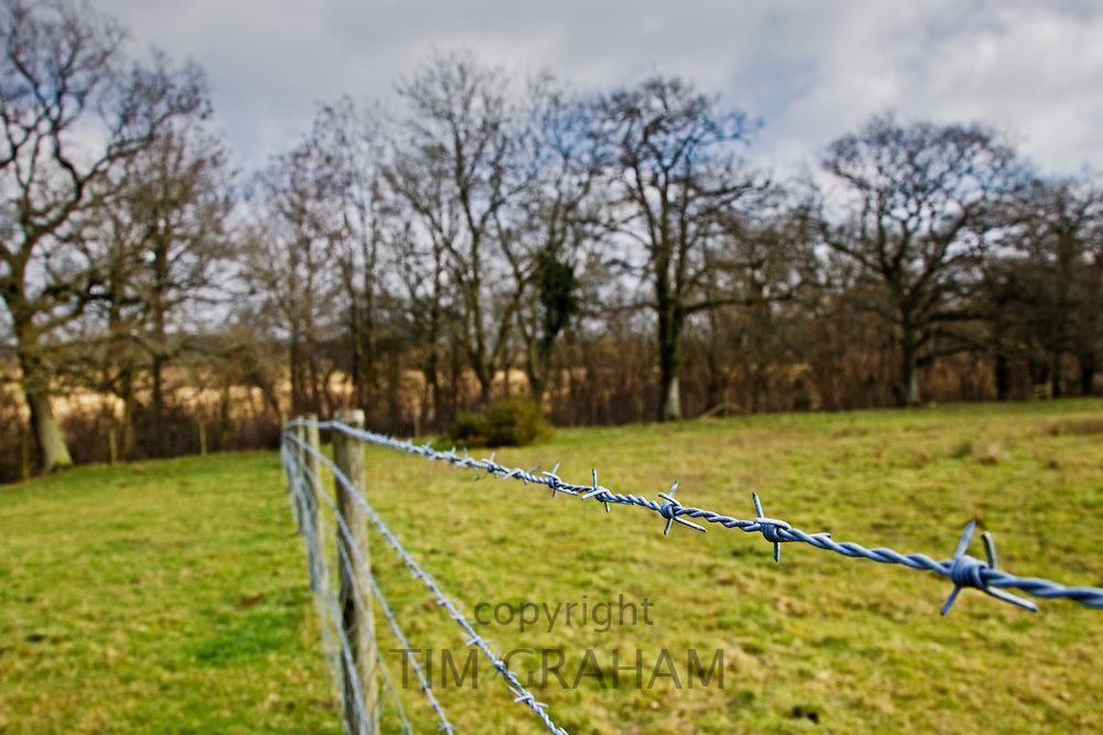Barbed wire fence in Oxfordshire field, Bruern, The Cotswolds, United Kingdom