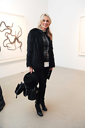 KIM HERSOV at a party to celebrate the publication of Allegra Hick's book 'An Eye For Design' held at he Timothy Taylor Gallery, Carlos Place, London on 23rd November 2010.
