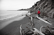 Walking amongst the driftwood at the edge of Lake Erie.
