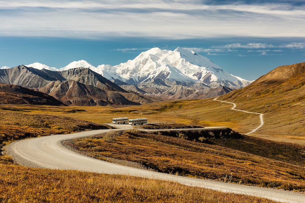 Tour buses at Stony Hill Overlook of Denali in Denali National Park in Interior Alaska. Autumn. Morning.