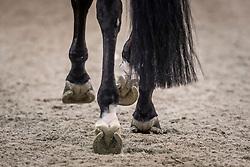 Gal Edward (NED) - Glock's Undercover<br /> Grand Prix CDI 4*<br /> Indoor Brabant - 's Hertogenbosch 2015<br /> © Hippo Foto - Dirk Caremans