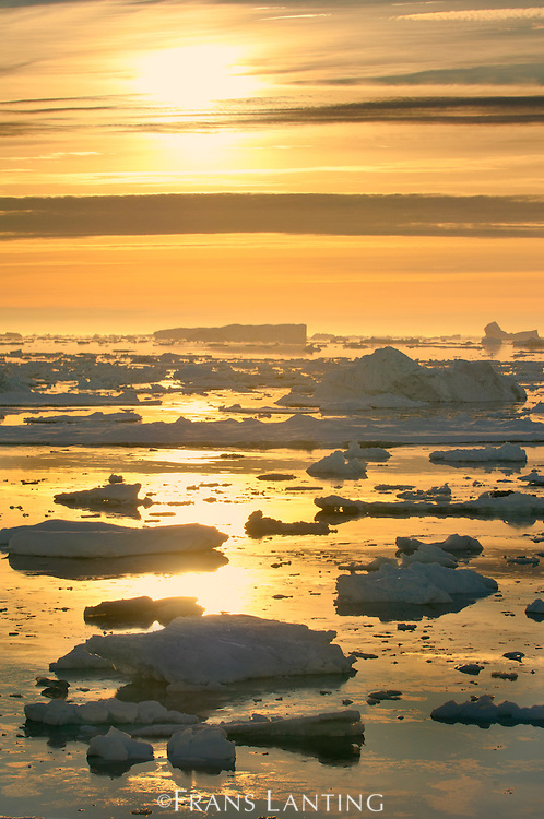 Icebergs at sunrise, Antarctic Sound, Antarctica