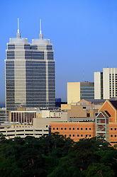 Stock photo of the skyline view of Ben Taub General Hospital with the St. Lukes Medical Tower in the background.