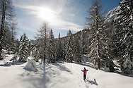 Winter hiking with snowshoes, above Passo Monte Croce. Dolomiti di Sesto (Sexten Dolomites), Südtirol (South Tyrol), Italy (February 2016) © Rudolf Abraham